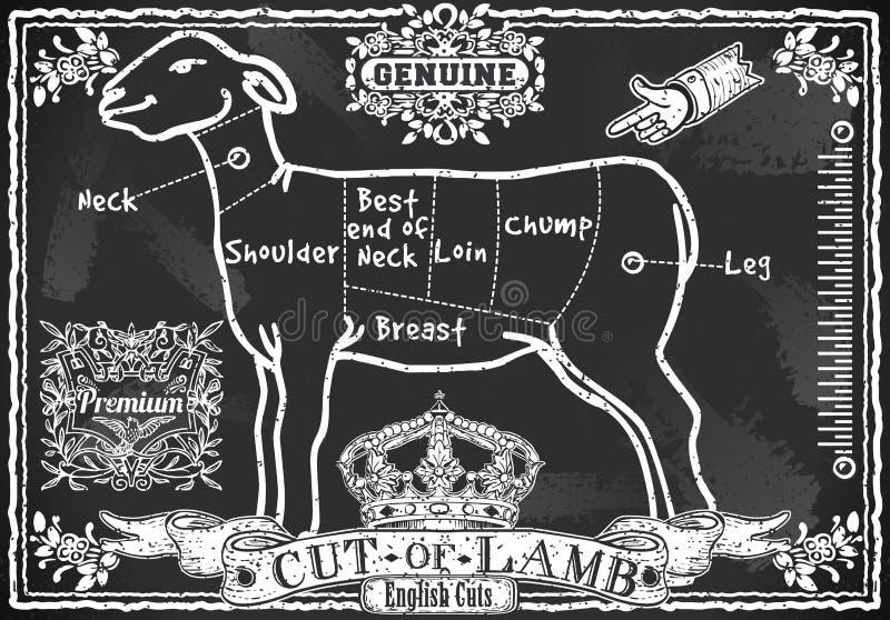 Quadro-negro do vintage do corte de cordeiro inglês ilustração royalty free