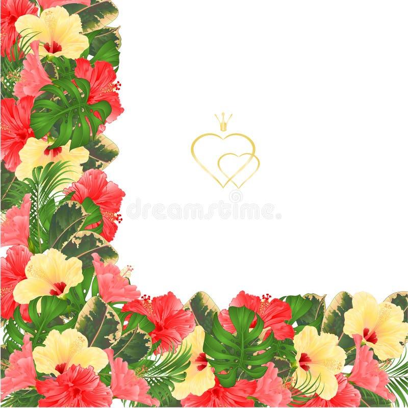 Quadro o fundo festivo da beira floral com florescência hibiscus amarelo e cor-de-rosa e brote a ilustração do vetor do vintage p ilustração do vetor