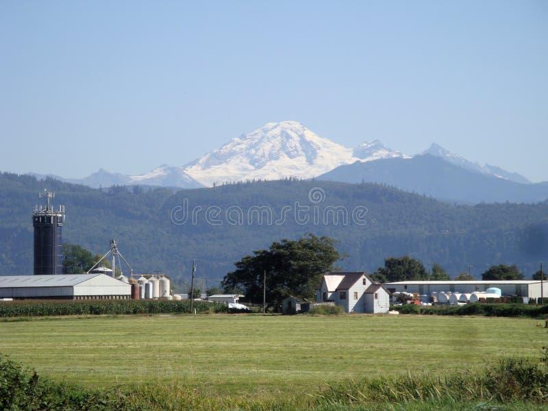 Quadro por terras agricultuiral na parte dianteira, Mt Teares do padeiro no fundo imagem de stock royalty free