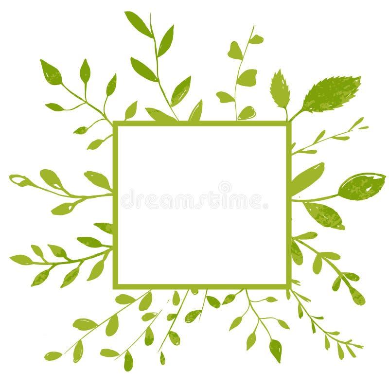 Quadro quadrado com plantas, ramos e folhas Fundo natural com copyspace ilustração royalty free