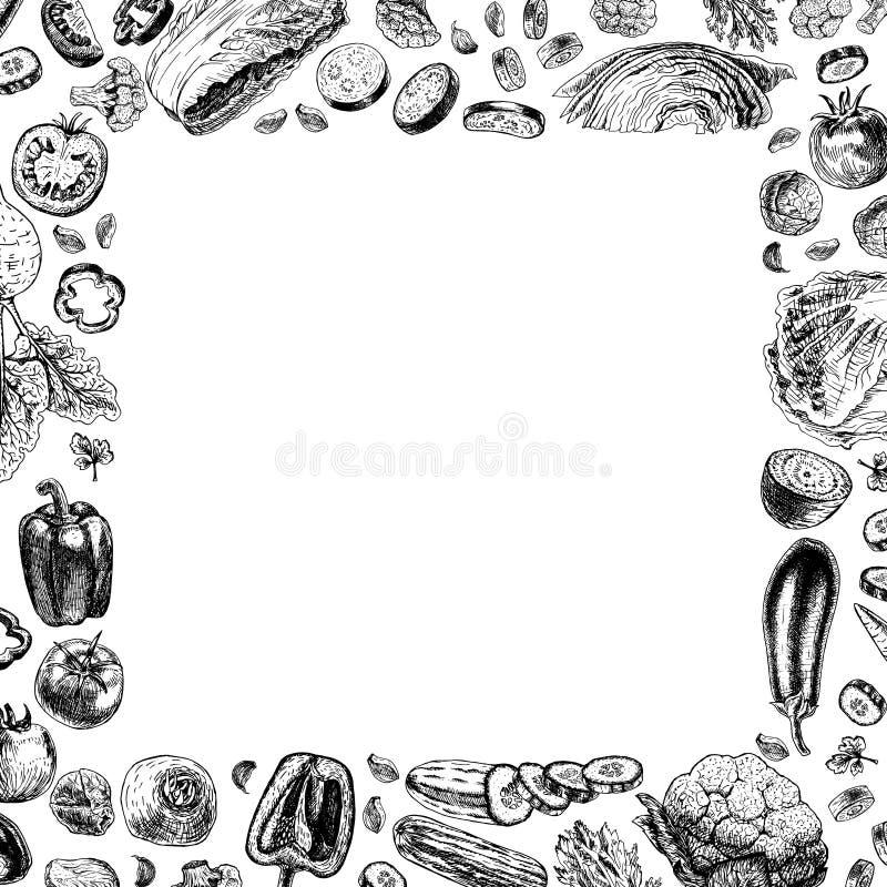 Quadro quadrado do vetor dos vegetais ilustração royalty free
