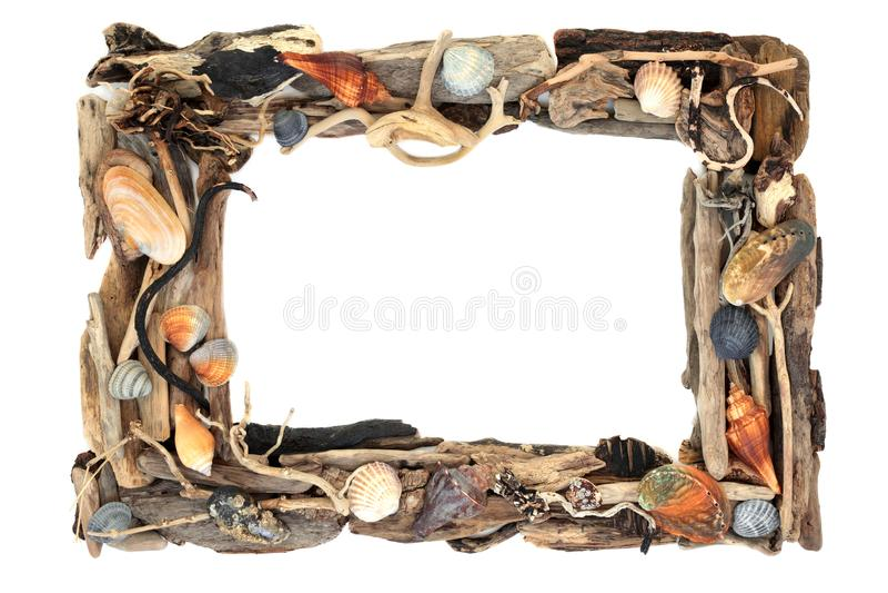Quadro r?stico da madeira lan?ada ? costa e da concha do mar imagens de stock