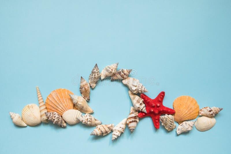 Quadro redondo com conchas do mar e estrela do mar vermelha no fundo azul do mar com espaço da cópia Conceito das férias da praia foto de stock royalty free