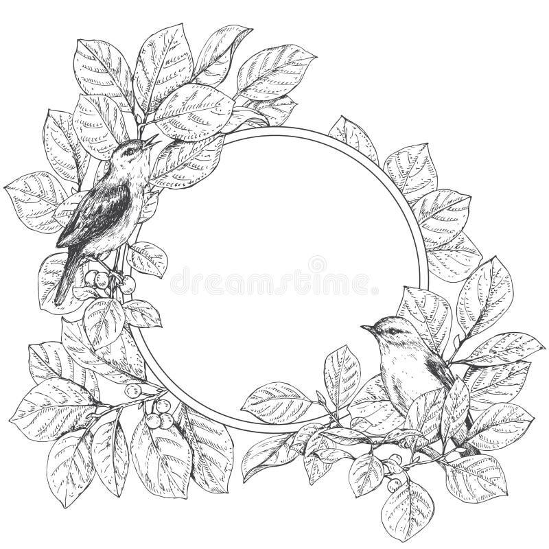 Quadro redondo com pássaros de assento ilustração stock