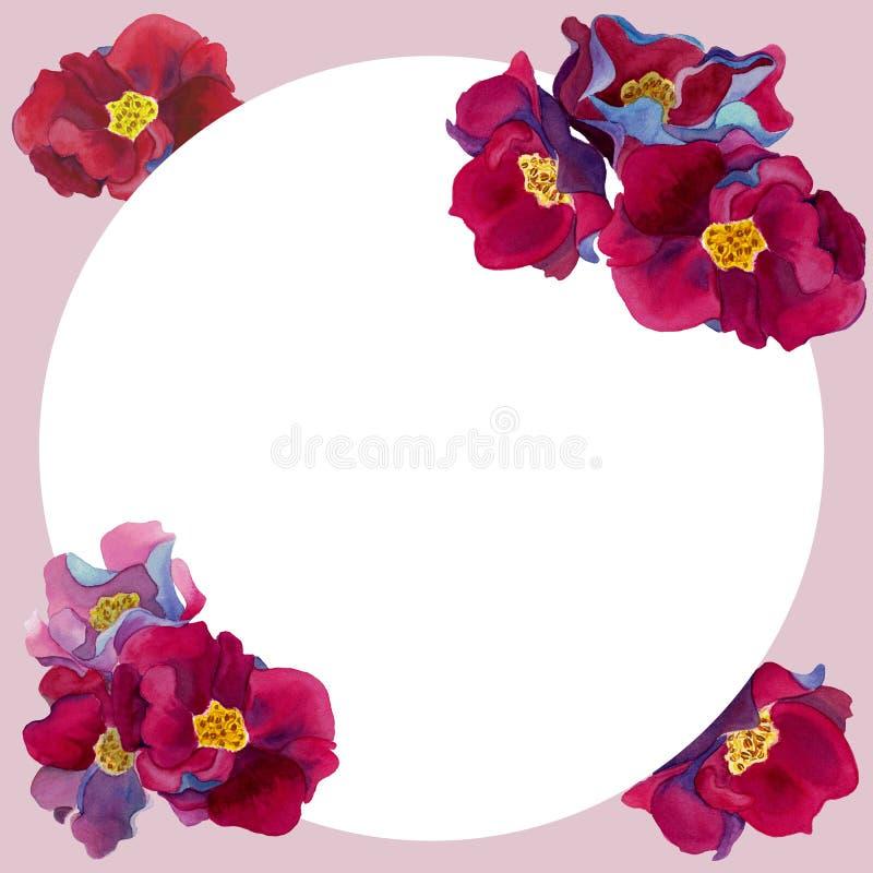 Quadro redondo da aquarela das flores com rosa e as pétalas vermelhas ilustração stock