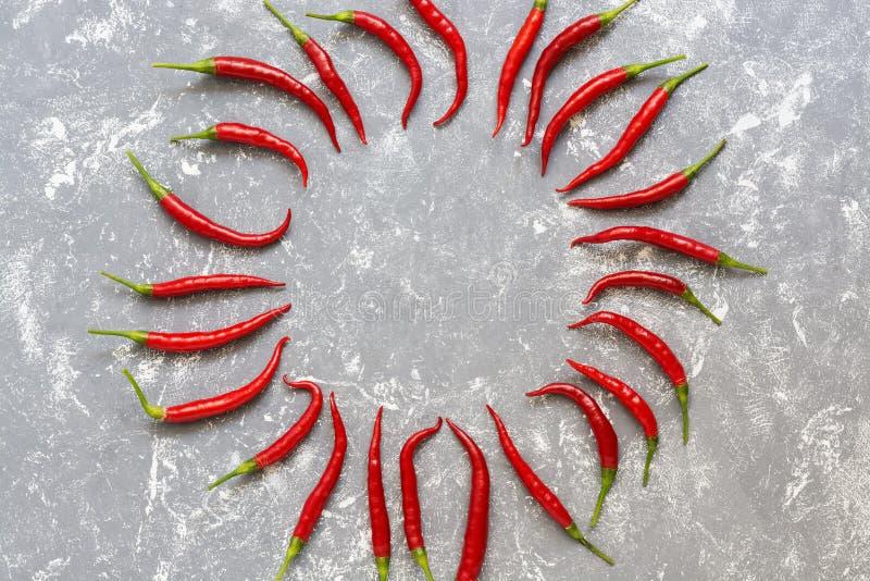 Quadro redondo de pimentas de pimentão vermelho quentes em um fundo cinzento, teste padrão Disposi??o criativa Vista superior, co fotografia de stock