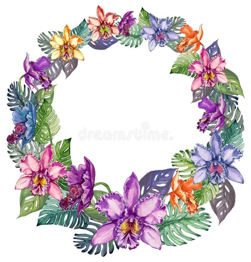Quadro redondo feito de flores da orquídea e das folhas coloridas bonitas do mostera Espaço vazio para seu texto no meio ilustração do vetor