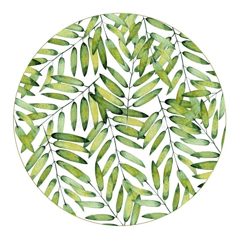 Quadro redondo feito a mão no fundo branco Folhas verdes tropicais, pintados à mão com aquarela ilustração do vetor