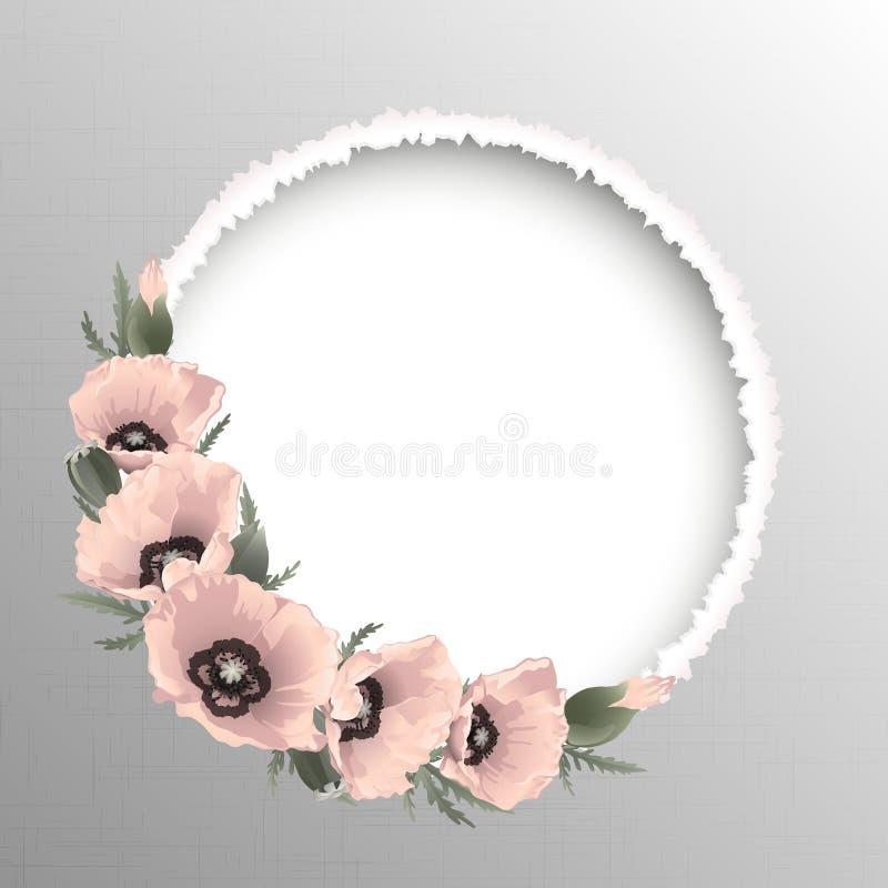 Quadro redondo floral das papoilas cor-de-rosa, vetor ilustração royalty free