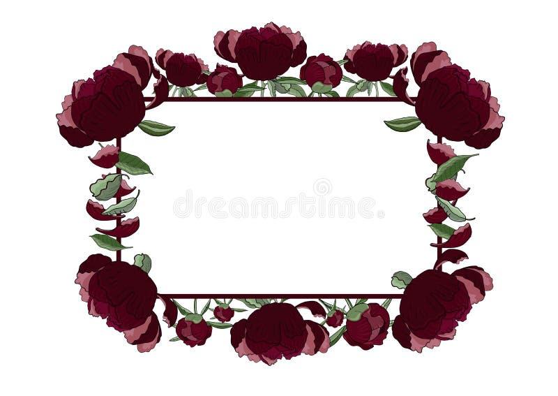 Quadro retangular floral da obscuridade - a peônia vermelha floresce, brota e sae com o espaço da cópia ilustração royalty free