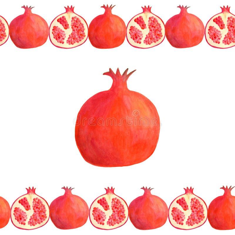 Quadro sem emenda da beira da romã da aquarela Ilustração vermelha tirada mão do fruto isolada no branco para o projeto de pacote ilustração stock