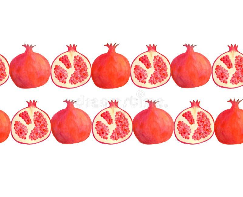 Quadro sem emenda horizontal da beira da romã da aquarela Ilustração vermelha tirada mão do fruto isolada no branco para o pacote ilustração royalty free