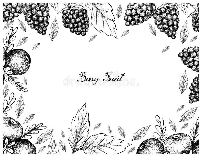 Quadro tirado mão do Crowberry e de Blackberry pretos ilustração stock