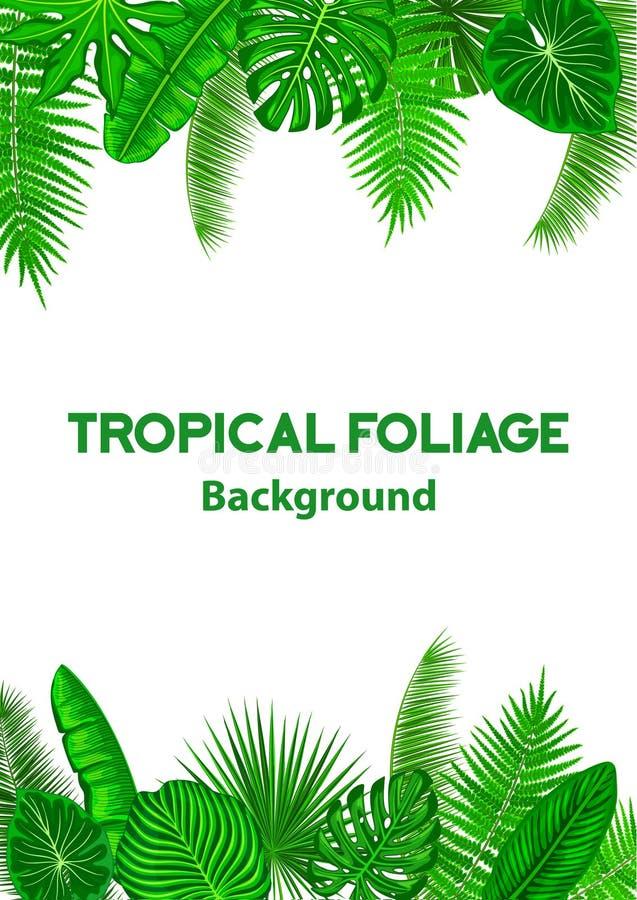 Quadro tropical do fundo com as folhas exóticas da selva ilustração stock