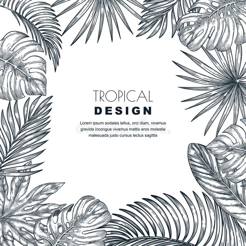 Quadro tropical do quadrado do vetor das folhas de palmeira Esboce a ilustração tirada mão de plantas exóticas da selva ilustração stock