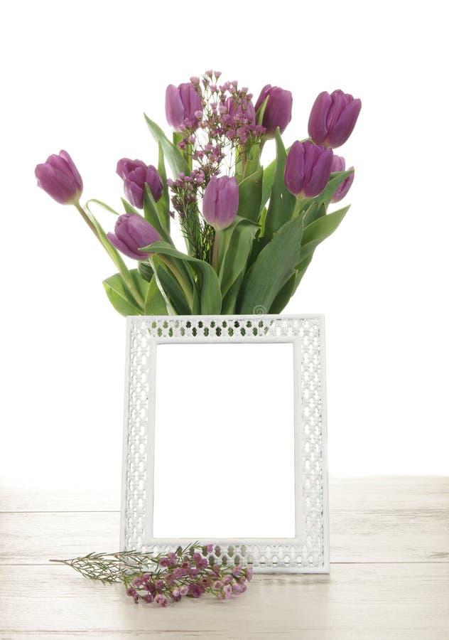 Quadro vazio com tulipas fotografia de stock