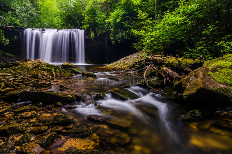 Quadrul falls, Martins Fork Wildlife Management Area. This summer scene was taken in the Martins Fork Wildlife Management Area in Southeastern Kentucky. It is stock photos