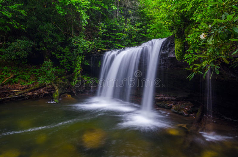 Quadrule Falls, summer, Martins Fork Wildlife Management Area. This summer scene was taken in the Martins Fork Wildlife Management Area in Southeastern Kentucky stock image