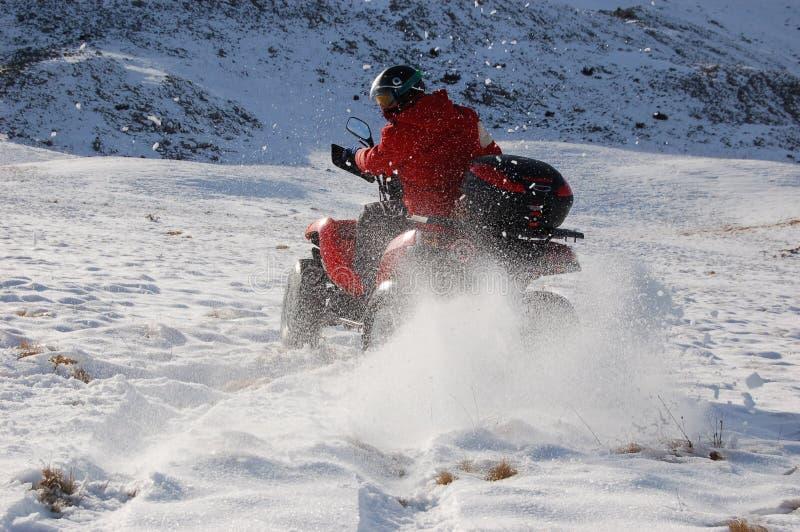 Quadruplez dans la neige photo stock