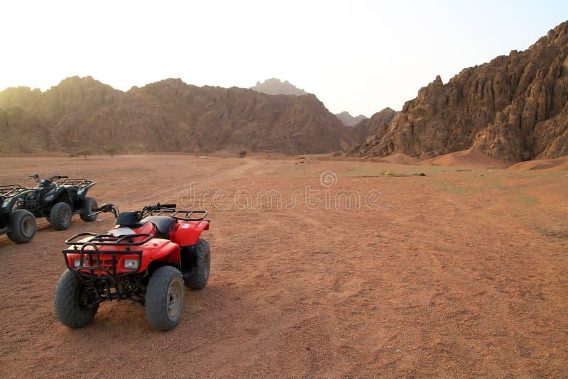 Quads trip in Sinai mountains royalty free stock photos