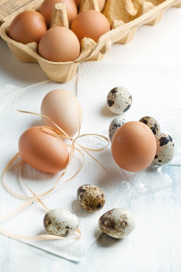 Quaglie ed uova del pollo fotografia stock