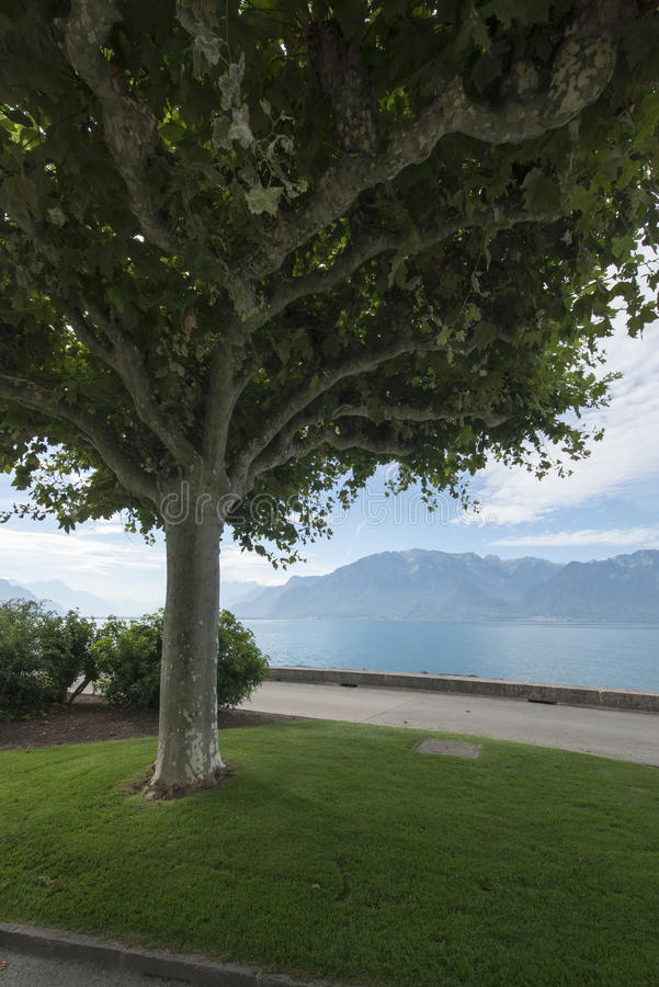 Quai Perdonnet, Vevey stock photo