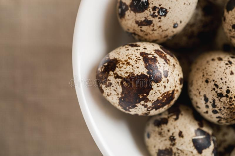 Quail dappled eggs in white ceramic bowl royalty free stock image