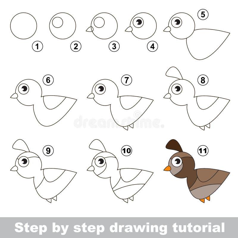 quail Dra som är orubbligt royaltyfri illustrationer