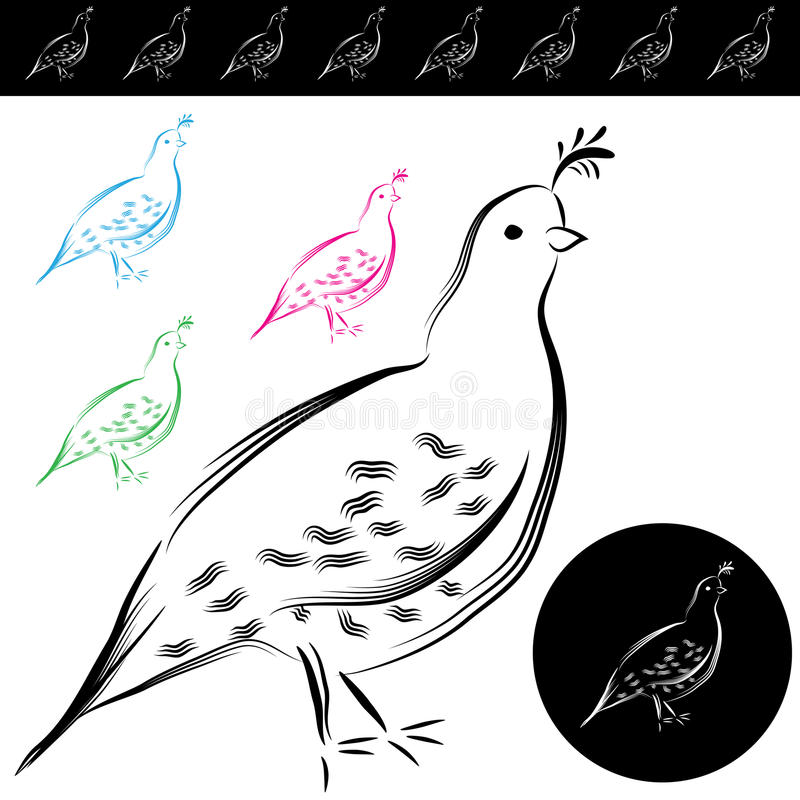 Download Quail Drawing Stock Photography - Image: 27166502