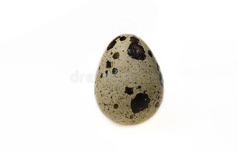 Quail egg isolated on white royalty free stock photography