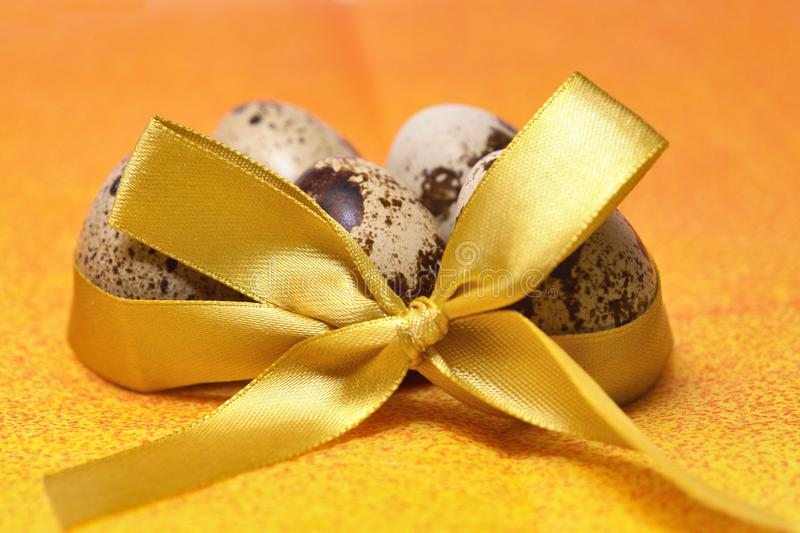 Quail eggs with bow stock images