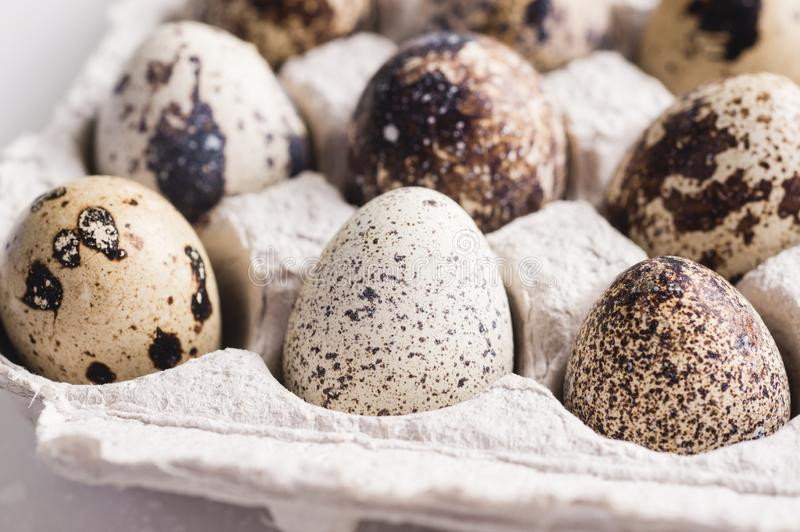 Quail eggs in cardboard packaging..Vegetarian organic food. Eco products. Closeup.  stock photography