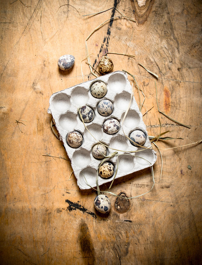 Quail eggs in a cassette. royalty free stock photography