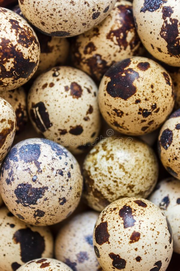 Quail eggs in a clay plate on a wooden background, a plate for storing quail eggs, a symbol of the Easter season. Healthy eating.  stock image