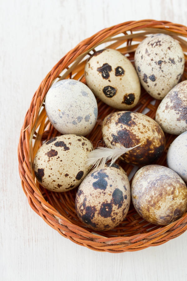 Quail eggs in dish. On table royalty free stock image