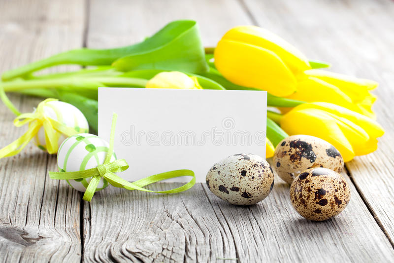 Quail eggs and Easter eggs royalty free stock image
