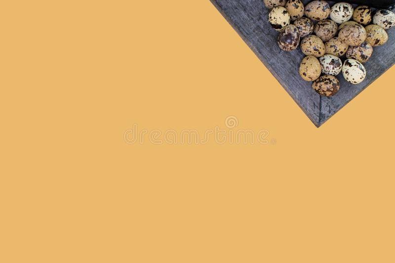 Quail eggs  in a grayish plate and an orang background stock photo
