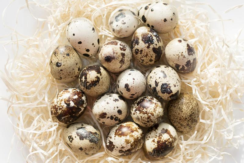 Quail eggs in hay nest on white stock photos