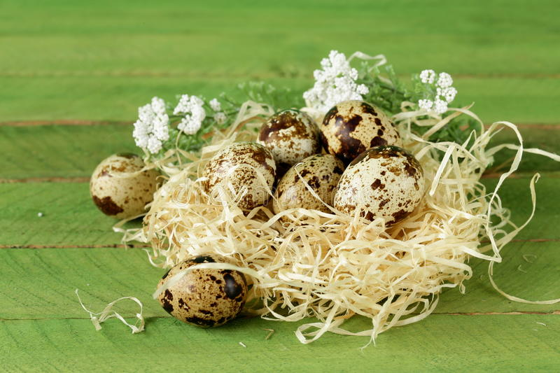 Download Quail Eggs In Nest On  Wooden Background Stock Image - Image of ingredient, easter: 38013999