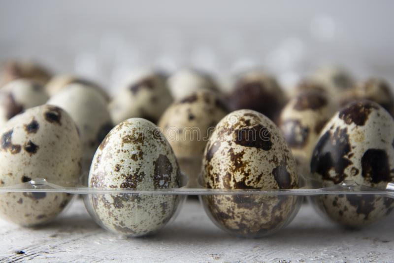 Quail eggs over white wooden background. Isolated quail raw eggs. rustic style royalty free stock image