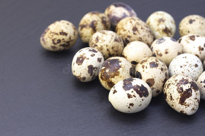 Quail eggs. On a dark background royalty free stock images