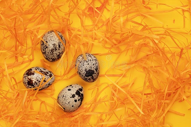 Quail eggs stock image