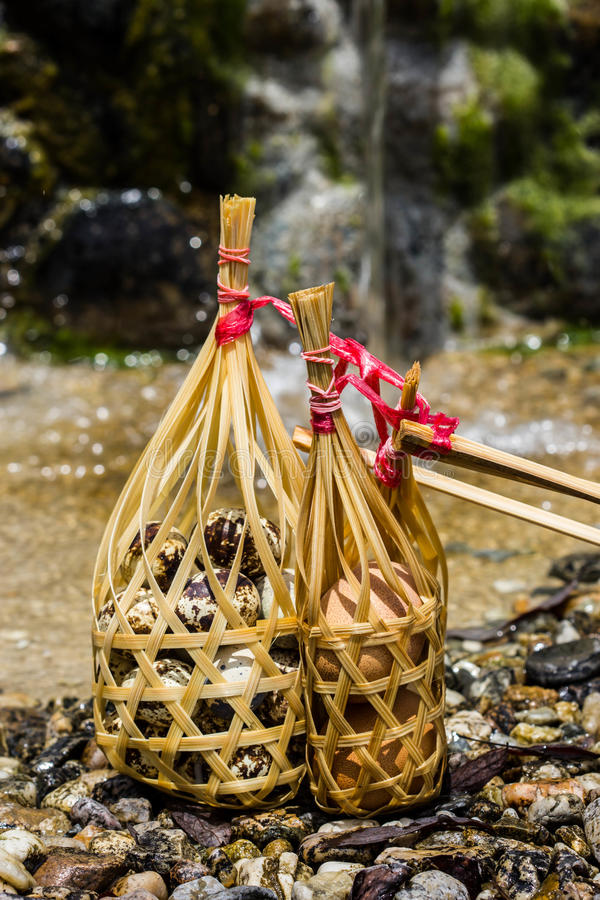Quail eggs in round bamboo basket boil on hot spring. All Quail eggs in round bamboo basket boil on hot spring stock images