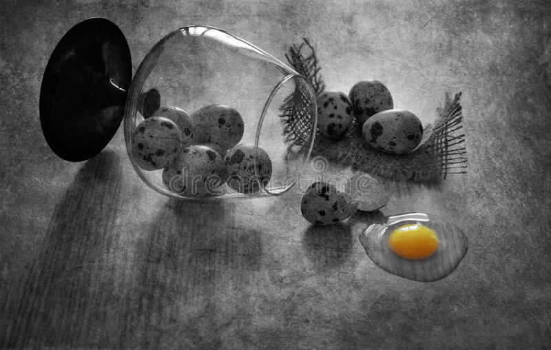 Quail eggs on the table. Broken quail egg. Black and white still life with quail eggs. stock photo