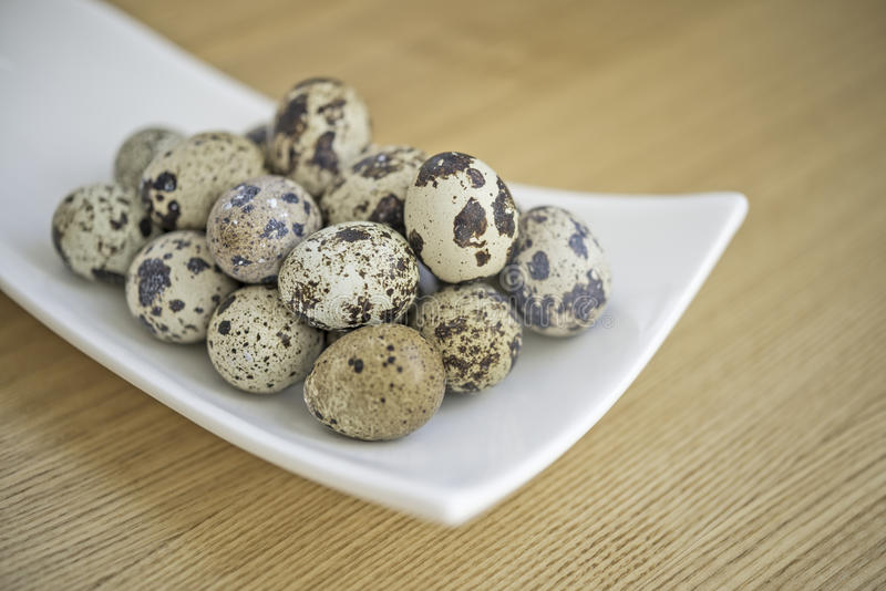 Quail eggs. In the white blow royalty free stock photos