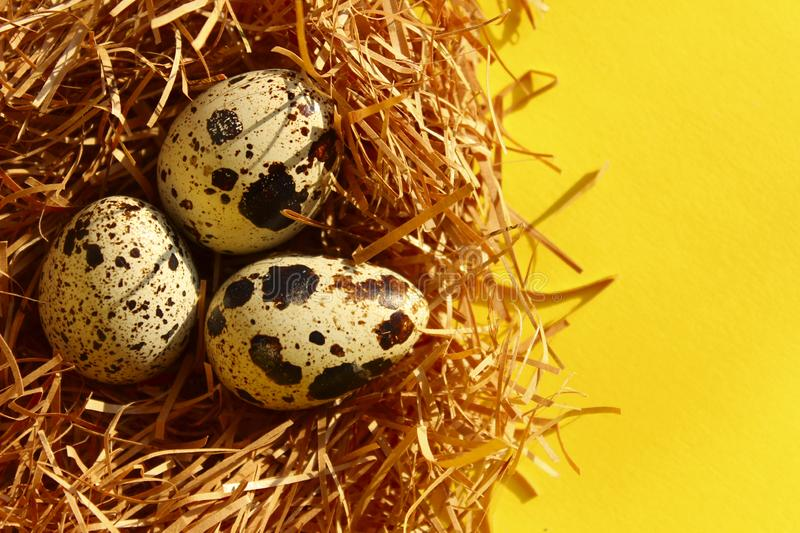 Food, Holidays, Nature Concept. Colorful Background. Quail Eggs On Yellow Background. Food, Holidays, Nature Concept. Colorful Background royalty free stock photo