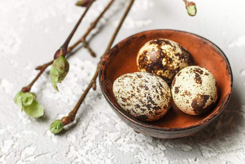 Quail fresh organic eggs in a ceramic bowl closeup. Easter. Selective focus royalty free stock image