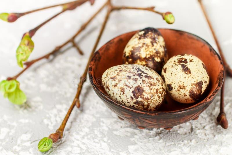 Quail fresh organic eggs in a ceramic bowl closeup. Easter. Selective focus stock photos