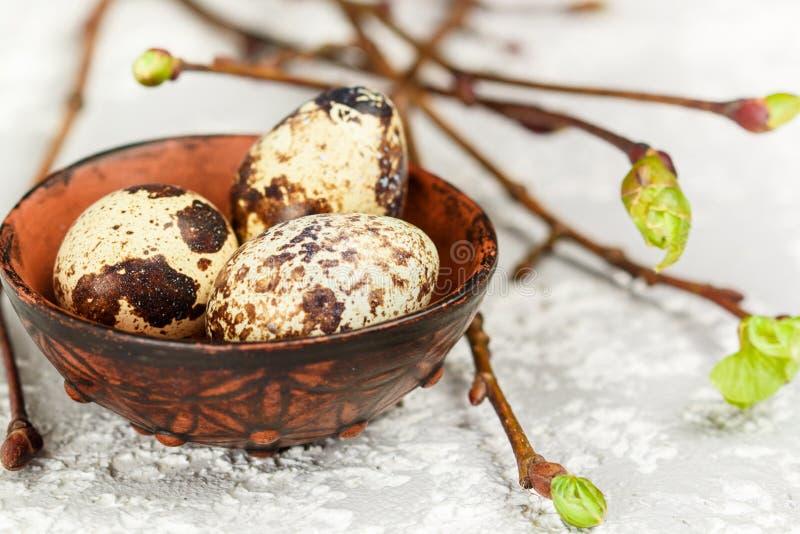 Quail fresh organic eggs in a ceramic bowl closeup. Easter. Selective focus royalty free stock images