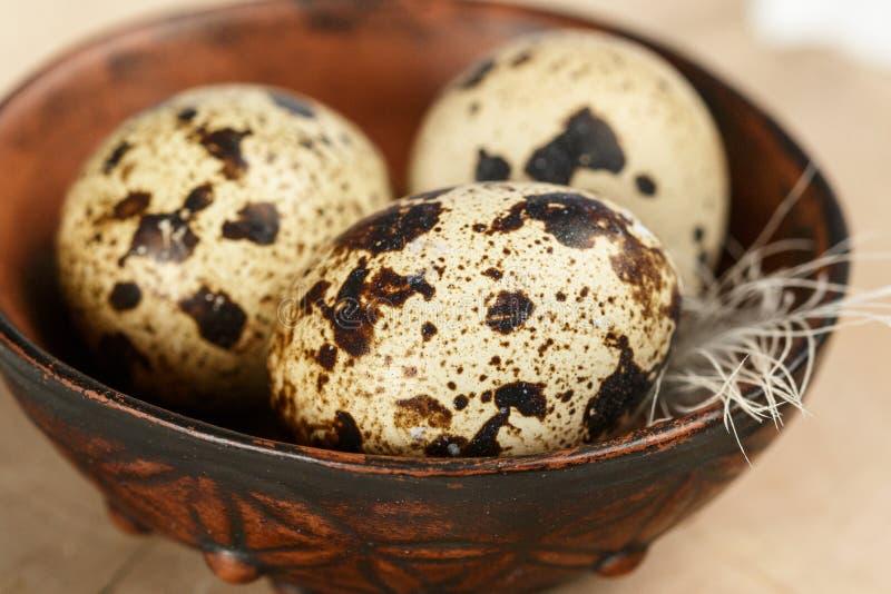 Quail fresh organic eggs in a ceramic bowl closeup. Easter. Selective focus stock image